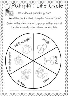 Fall writing activities, reading response, and word work pages ready to go. I love this pack for fall as it has it all. Kindergarten Science, Science Classroom, Teaching Science, Science Activities, Classroom Activities, Writing Activities, Teaching Ideas, Classroom Ideas, Preschool
