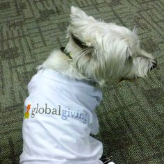 Dixon is all about company pride, sporting his @GlobalGiving Foundation tee every chance he gets. (You can tweet himto let him know how stylish he looks.)