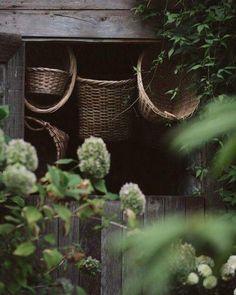 kelly brown photo — 🌿 (at Starling Lane Winery) Maron, Farmhouse Baskets, Farmhouse Garden, Kelly Brown, Rooftop Garden, Green Garden, Country Life, Country Living, Farm Life