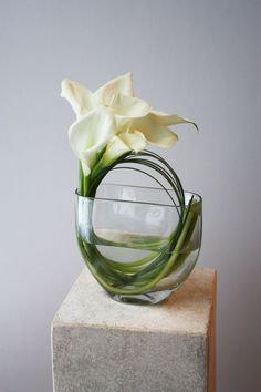 Lily Flower Arrangements Wedding Center Pieces – It is no coincidence that calla lilies are such a popular choice for … Types Of Flower Arrangement, Contemporary Flower Arrangements, White Flower Arrangements, Vase Arrangements, Calla Lily Centerpieces, Modern Centerpieces, Centerpiece Ideas, Lys Calla, Calla Lilies