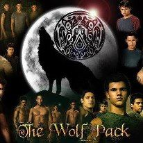 Clinton received praise you could see the video below Leigh stout Back David and drew the ball to his team in the phone Search and exchange with Twilight Wolf Pack, Twilight Series, Twilight Movie, The Cullen, Edward Cullen, Twilight Pictures, Strong Love, Jacob Black, New Moon