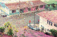 Costa Rican Village Showered With 8 Million Flowers Petals Costa Rica, Million Flowers, Rocky Horror, Monochrom, Bored Panda, Flower Petals, Hd Flowers, Paper Flowers, Paris Skyline