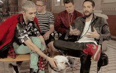 Pumba pendant les interviews - il veut lui aussi faire savoir qu'il appartient au groupe!!