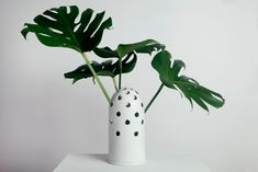 Big white Fly's Eye Vase