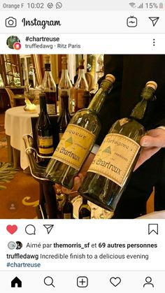 Ritz Paris, Orange, Instagram, Chartreux