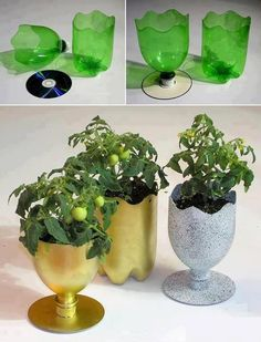 Make cute planters by cutting a plastic pop bottle in a wavy or zigzag pattern. Glue top end with the lid in place to an old CD. Paint your favorite colors! Other than paint, you have FREE planters, cause face it, almost all of us buy soda or know someone who does.