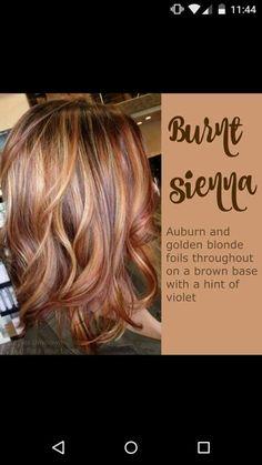 Burnt Sierra Hair Color. It's so fun yet elegant. Love it!