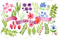 Watercolor in vector floral set Graphics Hi! It is a vector watercolor floral set for your design. The archive contains files in a format EP by chereshenka