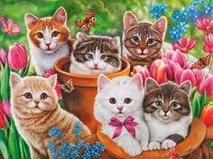 Garden kittens - Other Wallpaper ID 1807420 - Desktop Nexus Abstract