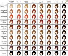 Таблица цветов хны