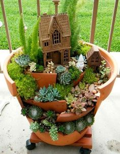 container gardening in ceramic pots , baskets and window boxes