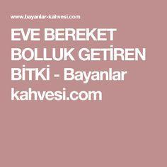EVE BEREKET BOLLUK GETİREN BİTKİ - Bayanlar kahvesi.com