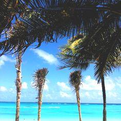 Cancun♡