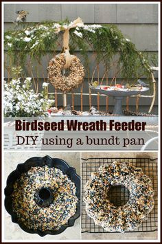 Feed your feathered friends with a fun winter DIY, a Birdseed Wreath Feeder, using a Bundt pan! With our cold and wintery weather I've been more conscientious about feeding our feathered frie… Bird Suet, Diy Bird Feeder, Bee Feeder, Homemade Bird Feeders, Suet Recipe, Diy Wreath, Wreaths, Wreath Making, Mulling Spices