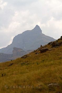 Rhino peak seen from the walking path at Castle Garden in the Drakensberg in South Africa - such a beautiful place. Midland Meander, Walking Paths, Kwazulu Natal, Game Reserve, Unusual Things, Lush Green, Rock Climbing, South Africa, Beautiful Places