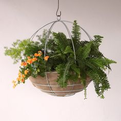"Water-Saving Natural Hanging Basket Liner, 11-28"" in Garden Frost Resistant at Terrain"