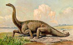 München / Wiesbaden - Im Laufe der etwa 3,8 Milliarden Jahre alten Geschichte des Lebens auf der Erde ereigneten sich immer wieder globale Massenaussterben von Pflanzen und Tieren. Dabei verschwand...