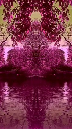 Nature video made into a trippy symmetry video Beautiful Photos Of Nature, Beautiful Nature Wallpaper, Beautiful Gif, Amazing Nature, Beautiful Landscapes, Moving Wallpapers, Hd Anime Wallpapers, Nature Gif, Nature Videos