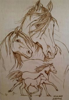 ideas wood burning stencils animals pyrography patterns for 2019 Electric Wood Carving Tools, Hand Wood Carving Tools, Simple Wood Carving, Wood Carving Designs, Wood Carving Patterns, Wood Patterns, Pattern Ideas, Wood Burning Stencils, Wood Burning Crafts