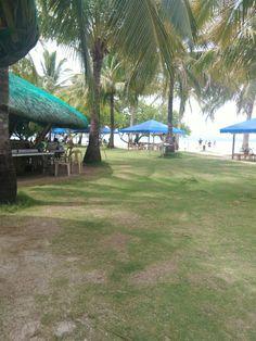 Pass Island Coron,Palawan Coron Palawan, Wander, Island, Adventure, Park, Nature, Travel, Block Island, Naturaleza