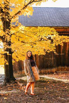 how to style a leopard jacket the coastal confidence Aubrey yandow Maine In The Fall, Holiday Weather, New England Fashion, New England Fall, Leopard Jacket, Black Headband, Skirt Belt, Autumn Activities, Hair Shampoo