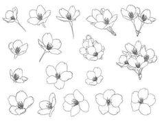 Designer doodle drawing, doodle art, drawing tips, drawing sketches, art dr Botanical Line Drawing, Floral Drawing, Botanical Drawings, Botanical Illustration, Drawing Flowers, Flower Sketches, Drawing Sketches, Drawing Tips, Doodle Drawings