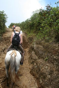 Horseback Riding in Hawaii, on the beach in Cozumel, in Arizona and many other places.
