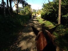 Costa Rica. Ojochal, Horse back riding. Pura vida! Read more on our blog at http://www.livingthedreamincostarica.com Follow us on Facebook at www.facebook.com/LivingInCostaRica
