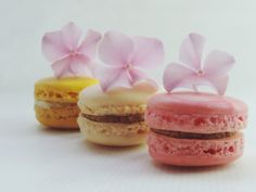 Macrons with flowers. Detail, raspberry, salted caramel and lemon macrons.