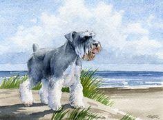 SCHNAUZER MINIATURE DogWatercolor Art Print signé D J Rogers
