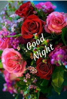 Good Night Images For Whatsapp New Good Night Images, Good Morning Beautiful Pictures, Good Night I Love You, Beautiful Good Night Images, Good Night Prayer, Good Night Friends, Good Night Blessings, Good Night Gif, Good Night Wishes