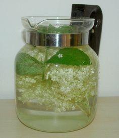 Bezový osvěžující nápoj z květů Rychlá příprava a osvěžující chuť. Využijte času, kdykvetou bezy.Výhodou těchto nápojů je to, že nejsou plné cukrů či umělých sladidel. Příprava: Do 2lt džbánku pramenité /nebo šungitové vody/ vložit 5květu černého bezu, 1 snítku meduňky či máty, půlku citronu nakrájeného na plátky, z 1 citronu šťávu, 5 lžic sirupu /meduňkového,…