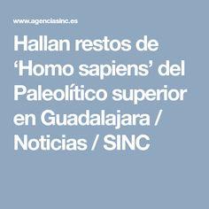 Hallan restos de 'Homo sapiens' del Paleolítico superior en Guadalajara / Noticias / SINC