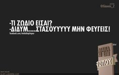 Funny Greek, Greek Quotes, Funny Photos, Laugh Out Loud, Gemini, Wise Words, Zodiac, Jokes, Hilarious Stuff