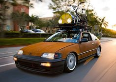 Rat Civic CRX