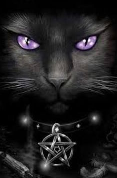 say black cats are bad luck. maybe that's been the problem my whole life; I happen to love black cats!They say black cats are bad luck. maybe that's been the problem my whole life; I happen to love black cats! Animals And Pets, Cute Animals, Gothic Hippie, Magic Cat, Image Chat, Black Cat Art, Black Cats, Witch Cat, Art Et Illustration