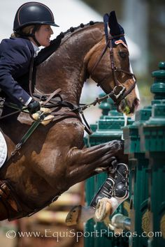 Sharon White and Wundermaske at Rolex 3-Day Event '14 - EquiSportPhotos