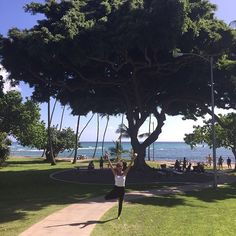 【lamahina3】さんのInstagramをピンしています。 《#walk #excercise #yoga #makalei #beachpark  #fishtree #diamondhead #walkingthru#kapiolanipark #view #photo #park #quiet #peaceful #hawaii #hilife #hi #yogaeverywhere #treepose #nofilter  #ハワイ #思うがまに#歩く #ひたすら歩く#海 #山 #浜辺 #坂を登り #大きな木 #伝説》
