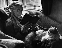 Elderly Woman with Cat Sitting in Her Lap - HU053279 - Rights Managed - Stock Photo - Corbis. UK, ca. 1943.