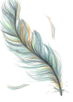 Original Drawing/Illustration - Blue Feather - I want this tattoo! So beautiful and delicate, I love it! Feather Drawing, Feather Tattoo Design, Feather Art, Blue Feather, Plume Tattoo, Watercolor Feather Tattoos, Cute Tattoos, Body Art Tattoos, Bird Tattoos