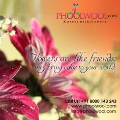 Flowers are like friends they bring color to your world.