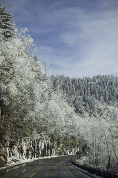 Smoky Mountains, Gatlinburg   Tennessee (by Nicolás Reyes)