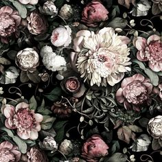 Dark Floral II Black Saturated Wallpaper - by Ellie Cashman Design Vinyl Wallpaper, Wallpaper Samples, Iphone Wallpaper, Dark Wallpaper, Black Floral Wallpaper, Flower Wallpaper, Floral Wallpapers, Botanical Wallpaper, Estilo Dark