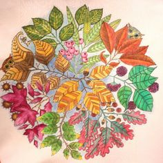 johanna basford el jardín secreto,coloreando dibujos para adultos,arte para quitar el estrés . Yaribu The Secret Garden Johanna Basford, coloring drawings adult art to remove stress.