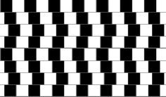These insane optical illusions have the ability to mess with your mind. There are many types of optical illusion, some natural and some man-made but all of them Victor Vasarely, Op Art, Black And White Illusions, Optical Illusions For Kids, Color Illusions, Cafe Wall, Line Artwork, Illusion Art, Perception