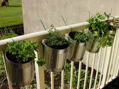10 Easy Apartment Herb Garden Ideas You Can Do Herb Gardening Design No. Apartment Herb Gardens, Balcony Herb Gardens, Balcony Gardening, Vertical Gardens, Diy Planters Outdoor, Balcony Planters, Planter Ideas, Balcony Ideas, Garden Planters
