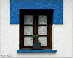CORTINA EM CROCHET + FLOR À JANELA - É UMA CASA PORTUGUESA, CONCERTEZA - flickriver.com