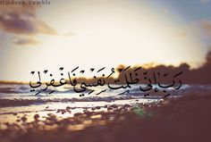 My Lord, indeed I have wronged myself, so forgive me