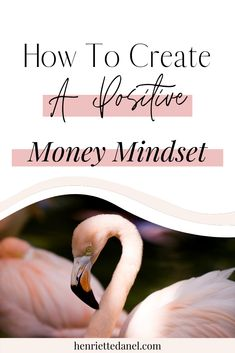 Are you wondering how you can attract more money and abundance into your life and business? In this episode we're discussing how to create a positive money mindset. Facebook Marketing, Business Marketing, Content Marketing, Business Tips, Online Marketing, Online Business, Certified Financial Planner, Financial Planning, How To Make Money
