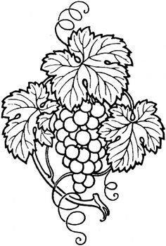 Bunch of grapes with leaves coloring page to use as an embroidery pattern.